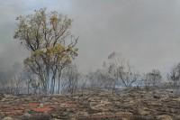 Bushfire   Near Karijini national park