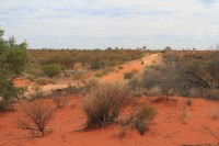 Red sand and dirt road   Near Mimilia