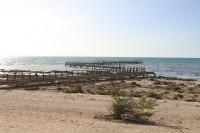 Stromatolit place   Shark bay