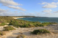 Hamelin bay   Part of Cape to cape track