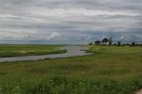 Kwando river | National park Chobe