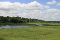 Chobe river - border | Near Ngoma bridge, Botswana, Namibia
