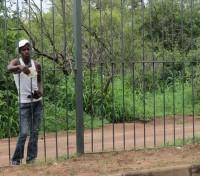 Dealer | Victoria fals, Zimbabwe