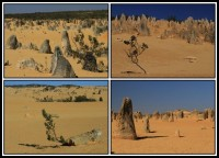 The pinacles desert | Ancient desert sculptures, Nambung National Park